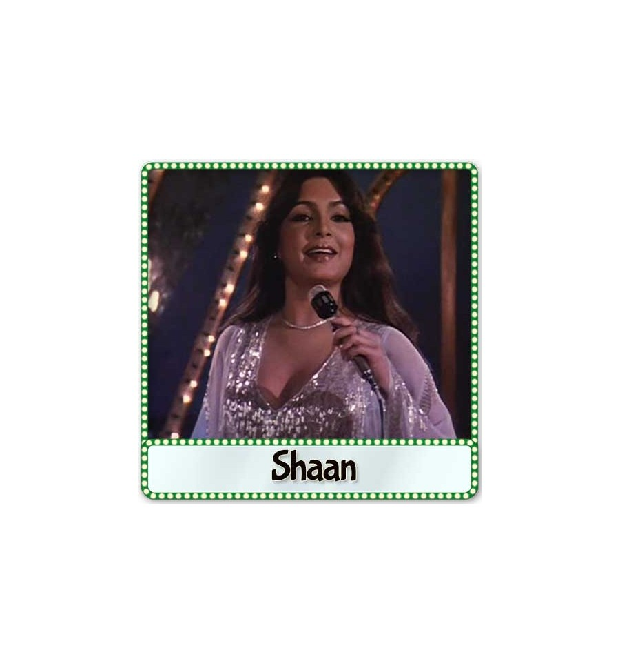 Pyar Karne Wale Karaoke | Shaan Karaoke