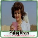 Mere Sanam Tera Khat Mila (With Female Vocals) - Palay Khan (MP3 Format)