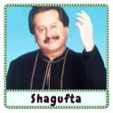 Yaadon Ka Ek Jhonka Aaye Karaoke - Shagufta (MP3 Format)