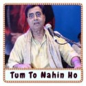 Woh Nahi Mila Toh Malaal Kya Karaoke - Tum To Nahin Ho (MP3 Format)